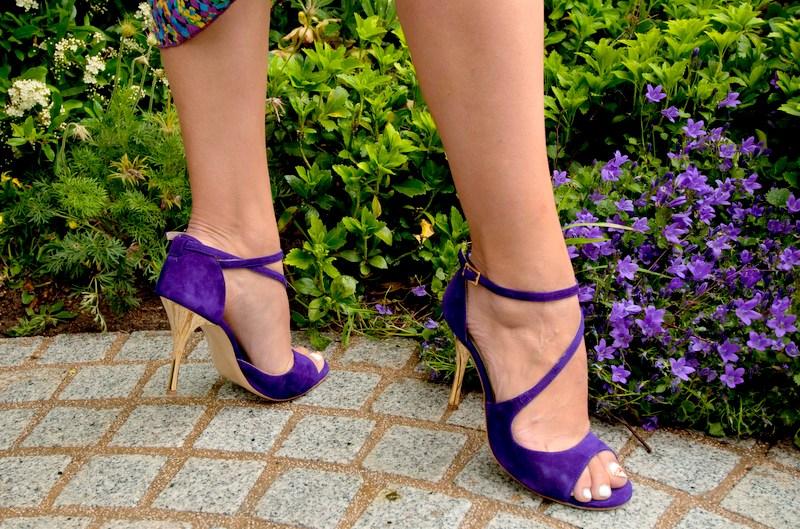 Venus Deep Purple
